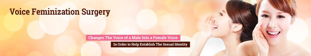 AVMA: Study seeks to explain feminization of veterinary profession ...